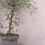 "Thumbnail: Wandtapete""stripes rosa"" - wallpaper"
