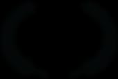 OFFICIAL SELECTION - Velcom Smart Film F