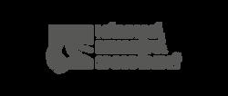 logo NDS 1