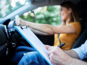 Theory Test Certificate Extension Petition.