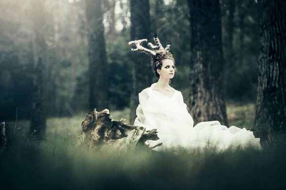 - Autum Moods, Antler - represents the Nature in Art Styling -