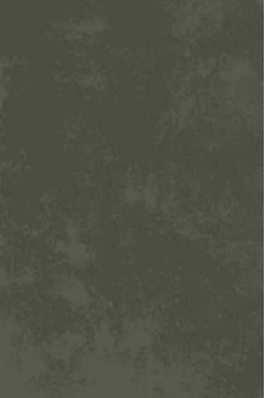 Concrete (Starting at $3.88/SQFT)