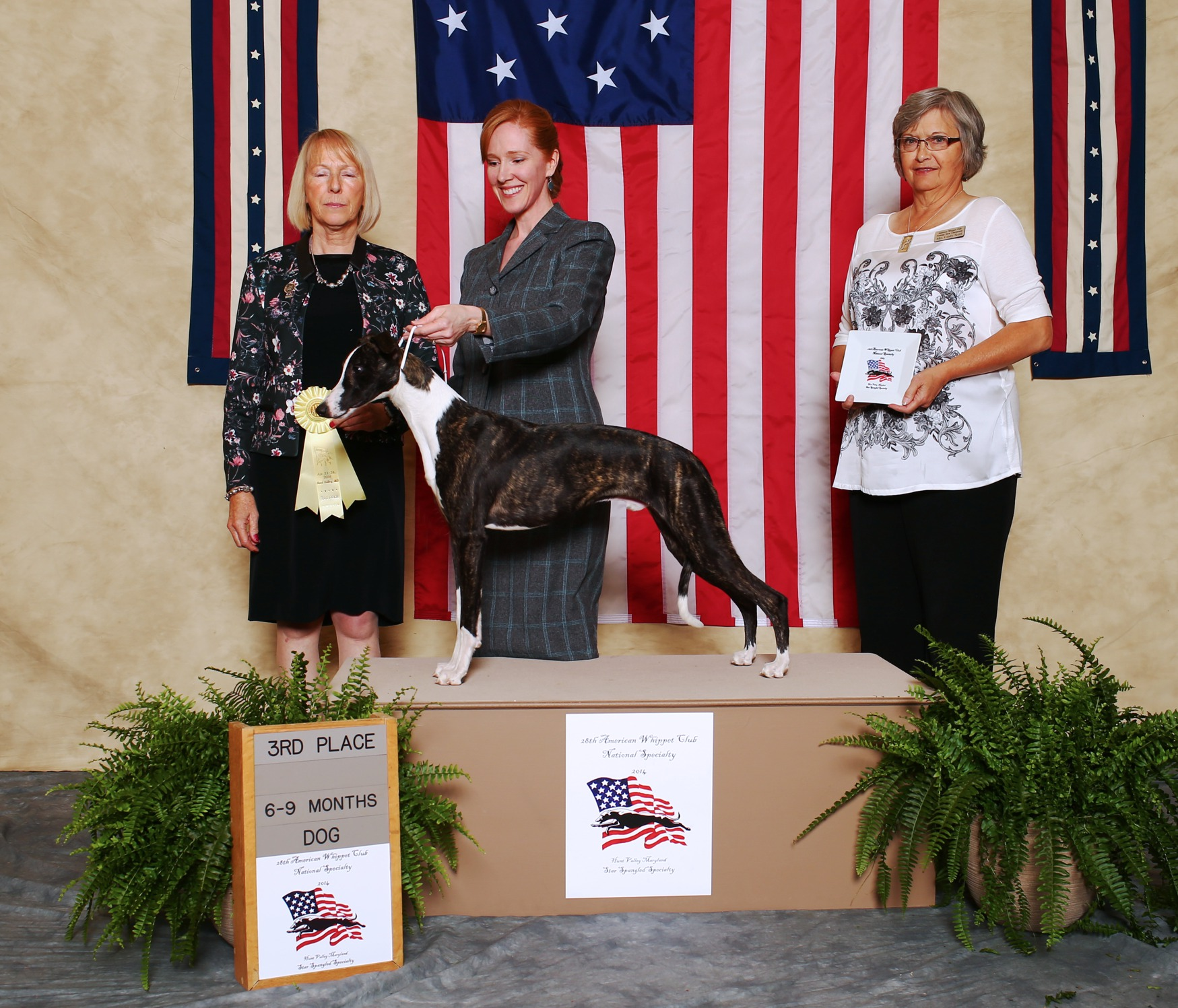 AWC National Specialty Maryland 2014