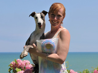 American Whippet Club Mid-West Specialty 2017