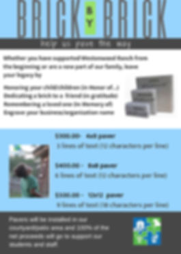 infopage_brickcampaign.jpg
