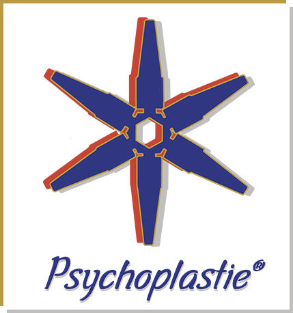 Logo Psychoplastie Toulon Dominique Struyve coach coaching psychologie conception innovante