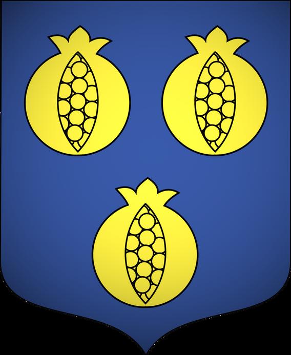 Blason famille de GRANDIN de SALIGNAC