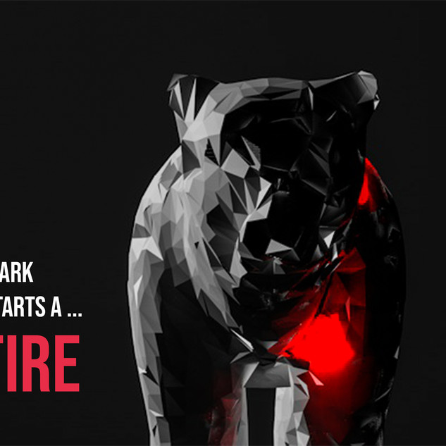 wildfire4.jpg