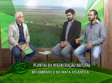 Terraviva Sustentável TV UOL