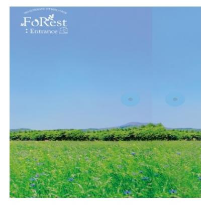EUNKWANG (BTOB) FOREST: ENTRANCE (1ST MINI ALBUM)