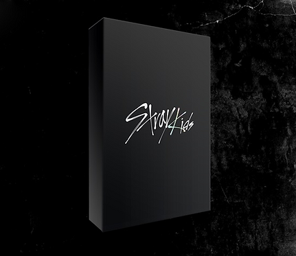 STRAY KIDS GO (1ST ALBUM) LIMITED EDITION