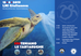 SoSteniamo le tartarughe marine.