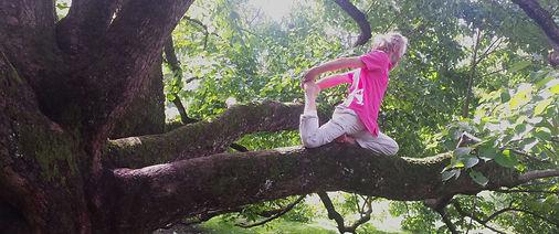 enoch-arbre-yoga