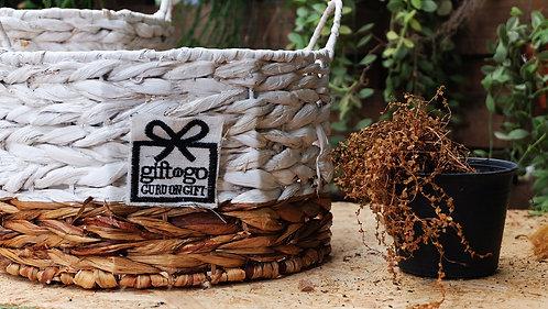 Medium Water Hyacinth Round White & Natural Storage Basket