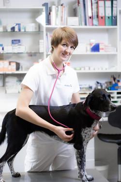 Tierarzt-55