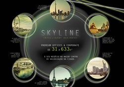 Skyline - Intelligent Business