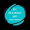 TRANSPARENT Bic Beaumont Art TEAL P&P do