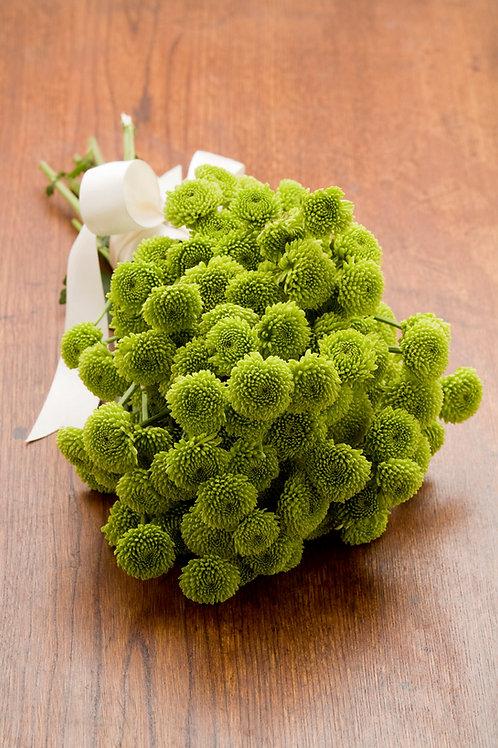 Green Button Mums Bouquet