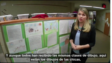 Single-Gender Classroom Minnesota