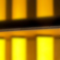 yellow doors.png