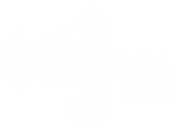 Seahorse Logo Reverse.png
