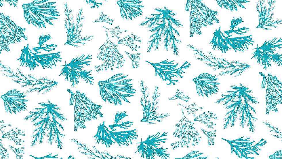 Texture Background 2.jpg