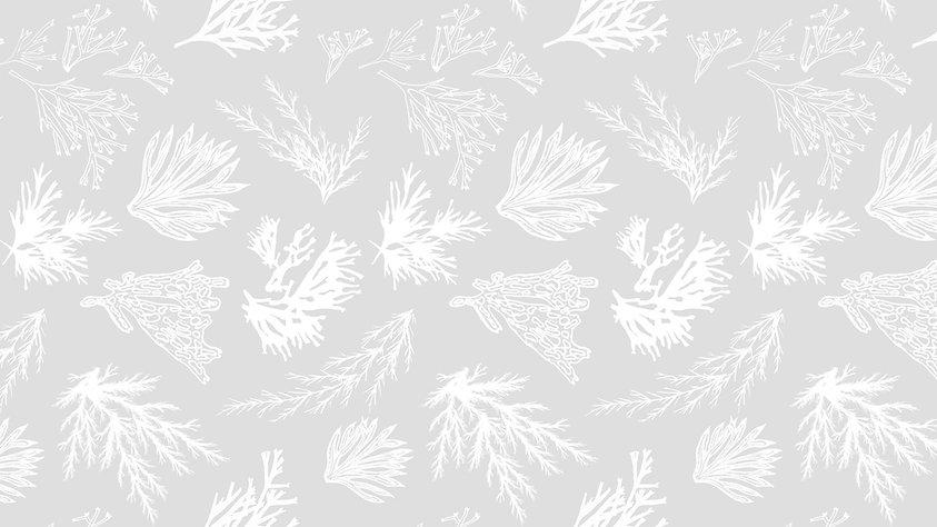 Texture Background 1.jpg