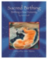 SB Book Cover- Google image.jpg