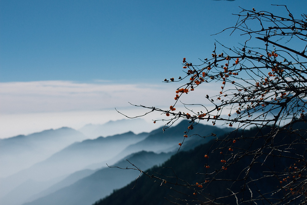 Fog over a mountain in Sichuan Province, China