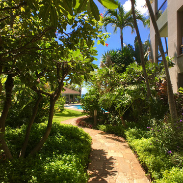 Pathway to the Pool and Oceanfront.  Gated and Private.