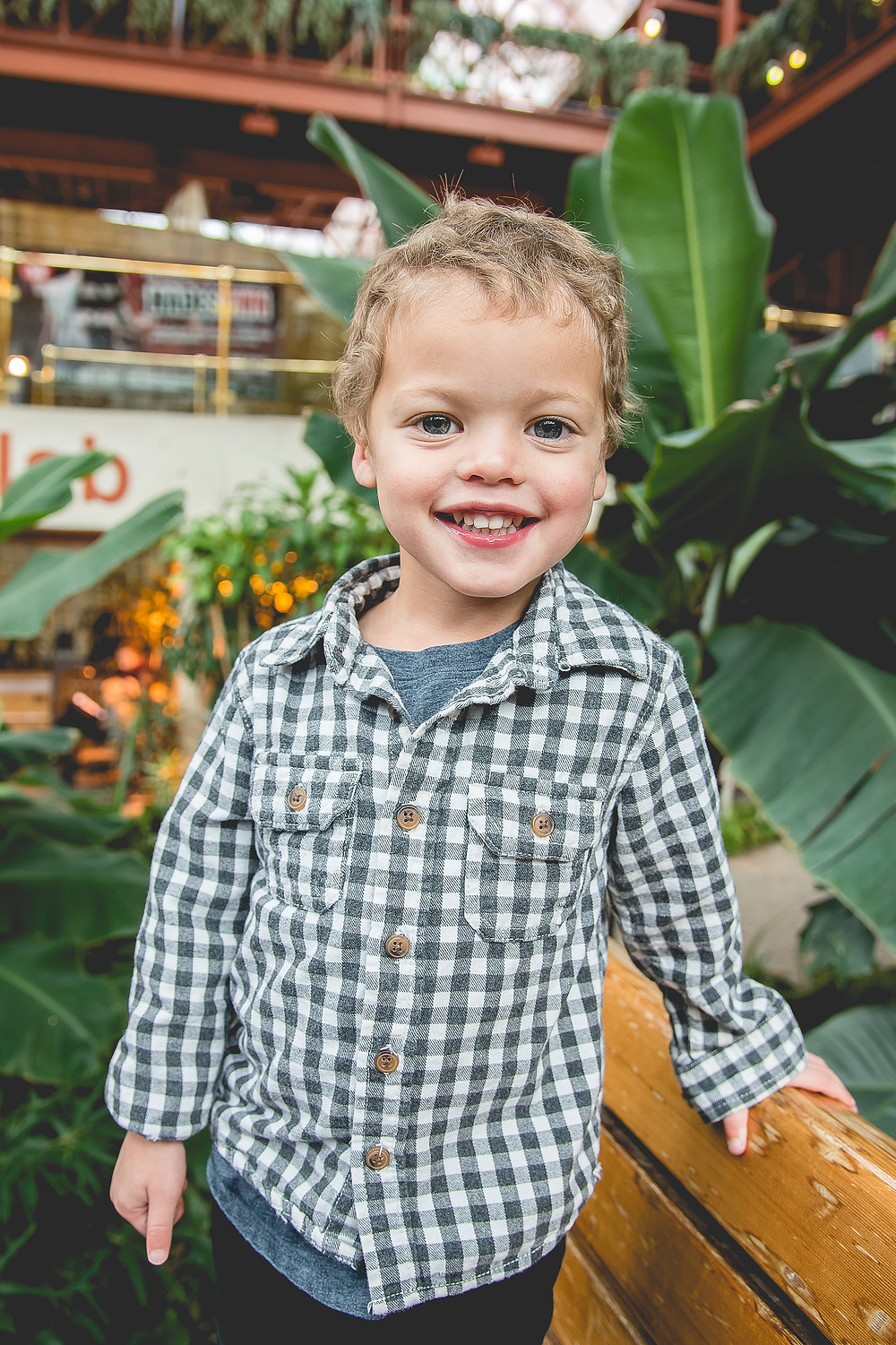 Young boy 3 years old in a blue and white plaid shirt standing on a bench inside an atrium, surrounded by large lush green plants with the biggest smile on his face.