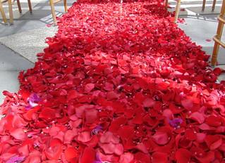 "Red ""carpet"""
