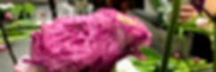 Flower Workshops, Ranunculus, Floral Design, Floral Design Worshops, Workshop, Flower Workshop, Flowers