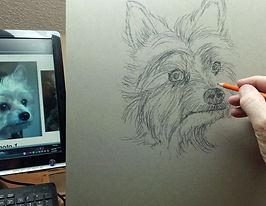 1 Jenny-Sketch.jpg