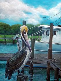 Brown Pelican (si).jpg