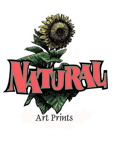 Design - Sunflower.jpg