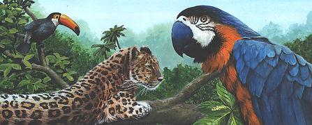 Tropical Rain Forest.jpg