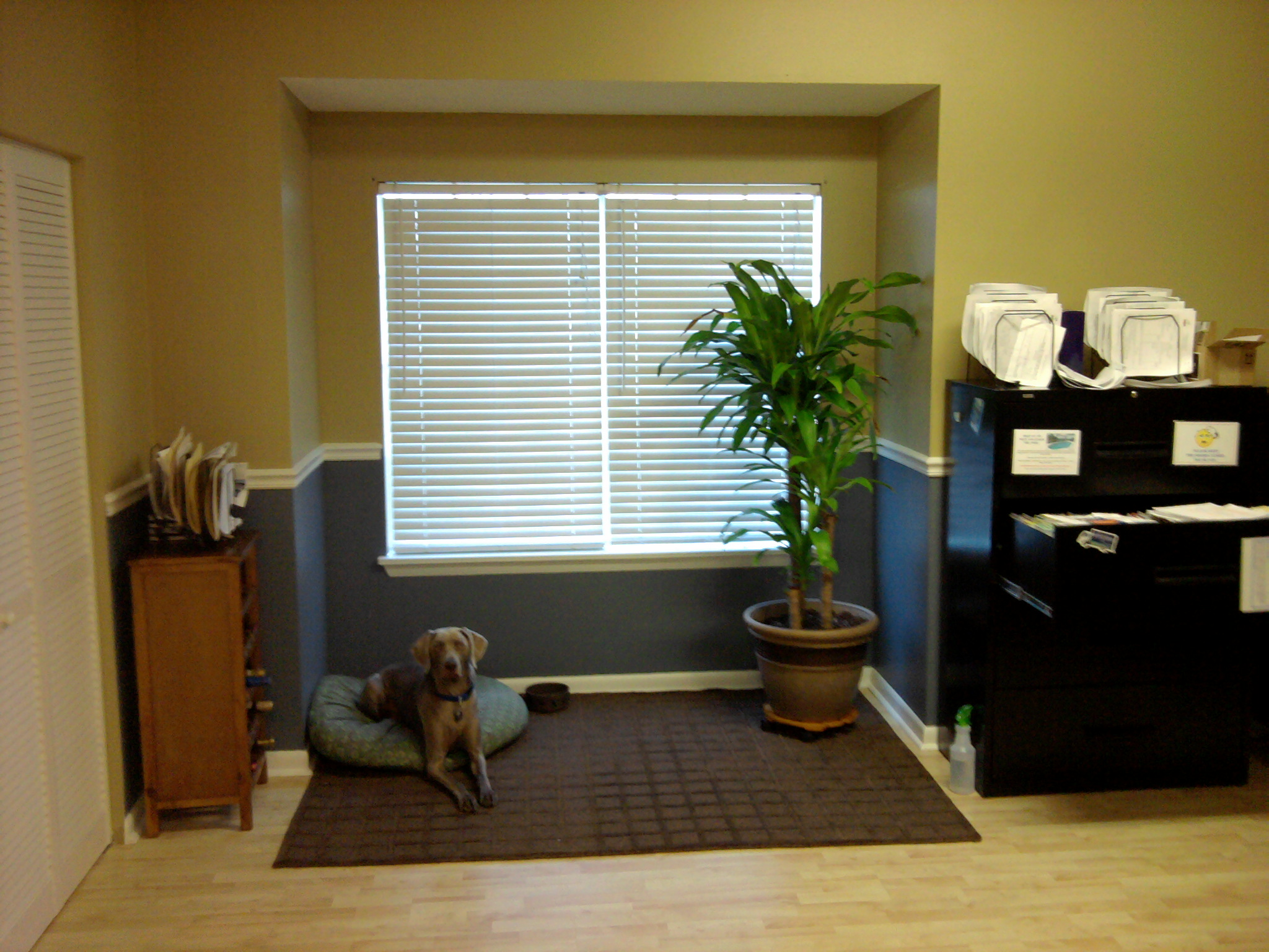 Trim & Painted Office Space