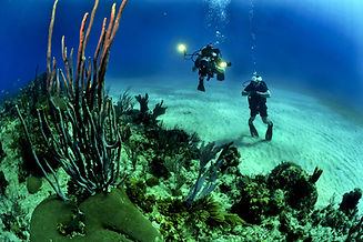 Divers with Flashlight