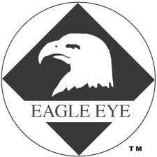 eagle eye.jpeg