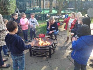 Year one campfires