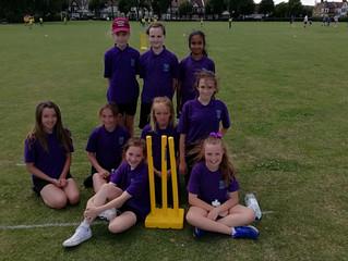 Cricket Festival