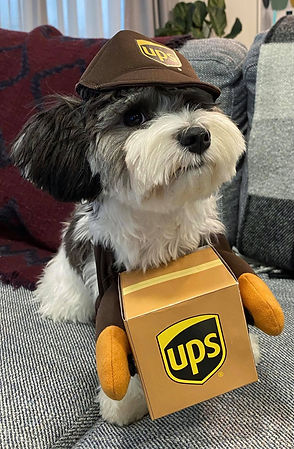 Elliot UPS.jpg