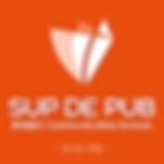 Logo-carre-SDP.png