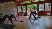 Planning Yoga des cours en Zoom - 3ème semaine de juin: