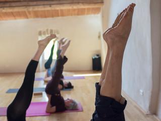 Bonne année les yogi.ni.s !!!