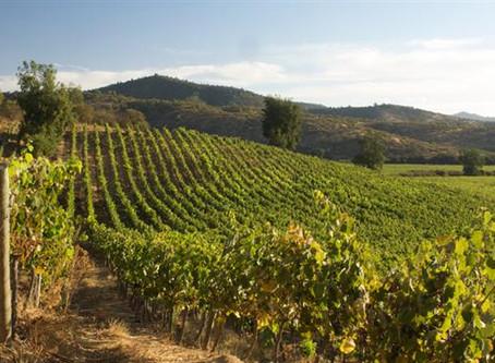 Los mejores Valles para los mejores vinos.