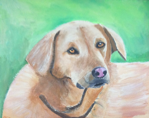 Pet Paintings - 8 x10