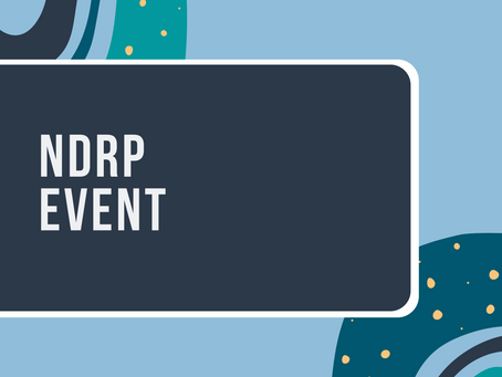 Public webinars: find out more about NDRP