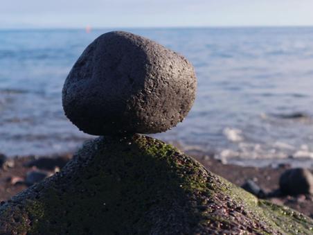 Pensamento, pedra e pássaro. Vai mas fica.